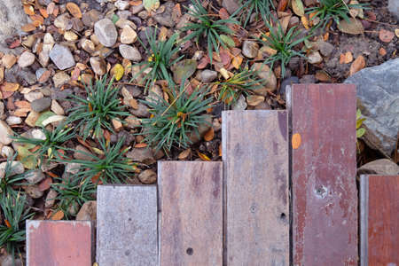 Top view timber over outdoor garden in a pattern of growing up and down trend