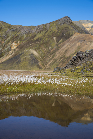 Scenes from hiking in Landmannalaugar Stockfoto