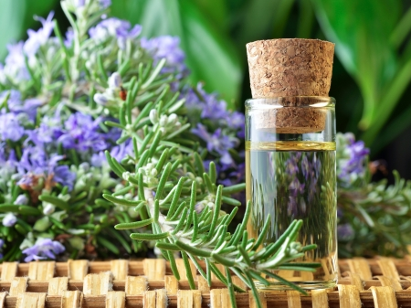 Photograph showing a bottle of rosemary Aromatherapy oil