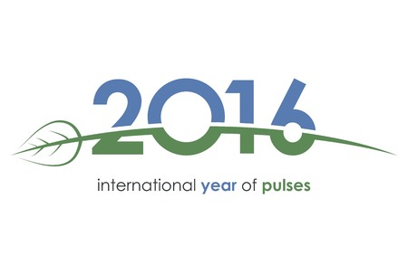 pulses: 2016, pulses, international year of pulses, green, blue, ecology, beans, grains