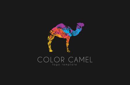 dromedary: Camel . Color camel design. Animal . Creative