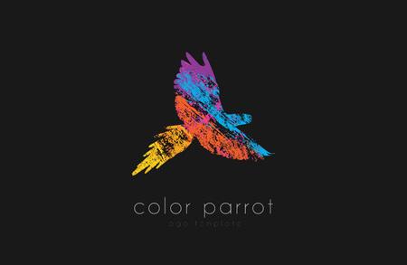 Parrot design. Color parrot. Bird . Exotic .