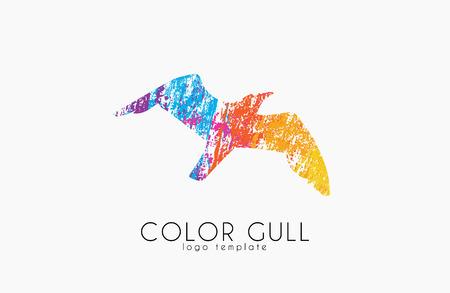 gull: Gull . Color gull. Birl . Creative . Sea bird.