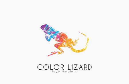 Lizard . Color lizard design. Creative .