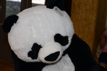 stuffed: stuffed panda Stock Photo