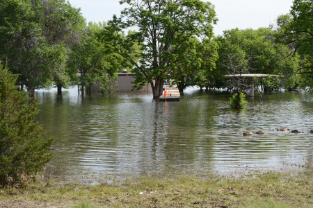 chatfield: flooded picnic area