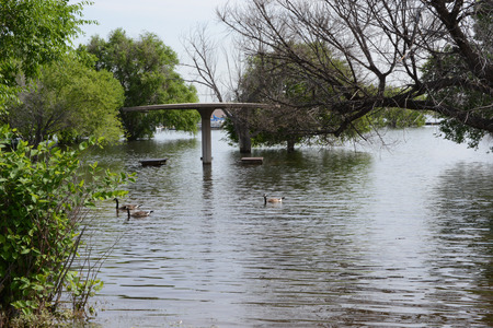 flooded picknick area