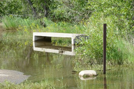 chatfield: flooded bench