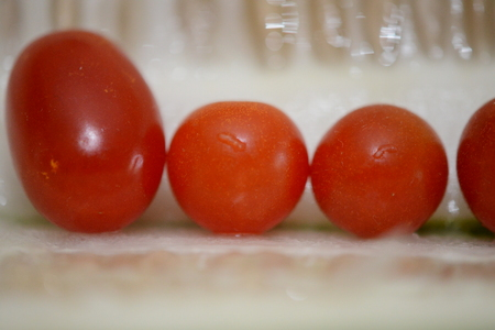 line of tomato family Stockfoto