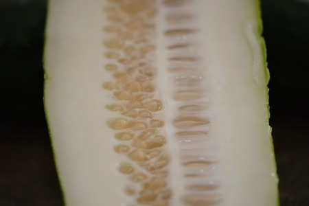cross section of cucumber