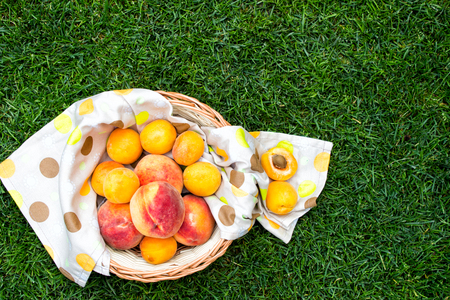 apricot kernels: Apricots and peaches in a wooden basket with a tablecloth. Fruit on green fresh grass in the garden. Stock Photo