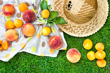apricot kernels: Apricots and peaches with a tablecloth and straw hat. Fruit on green fresh grass in the garden. Stock Photo