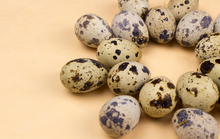 Quail eggs on pastel yellow surface. Close up macro. Easter holiday background. Stock Photo