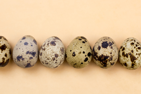 Quail eggs on pastel yellow surface. Close up macro. Easter holiday background. Stok Fotoğraf