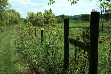 A grassy path along an old fence in the country. Stock Photo - 412629