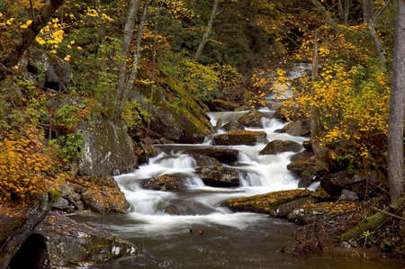soften: A small secluded cascade in the forests of West Virginia. Taken with a slow shutter speed to smooth and soften the water. The stream is framed with the colorful yellow leaves of autumn. One of many waterfalls in my collection.