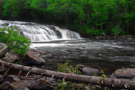 tumbling: Buttermilk falls in New Yorks Adirondack mountains. This waterfall  is located near Deerland in Hamilton County New York.  Photo was taken in late spring. This  broad cascading waterfall is about 15 feet tall and is  surrounded by green trees. Stock Photo