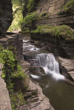 enfield: Bella cascata in Enfield Glen, che fa parte di Robert Treman State Park di New York. Verde muschio e felci lungo le ripide pareti gola aggiungere alla bellezza della scena. Archivio Fotografico