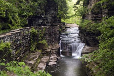 enfield: Bella cascata in Glen Enfield, che fa parte del Parco statale di Robert Treman New York. Muschio verde lussureggiante e felci lungo le pareti ripide gola aggiungono la bellezza della scena.  Il sentiero di pietra � stato costruito del 1930 e si integra perfettamente con il