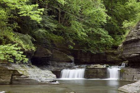 enfield: Una piccola cascata lungo Enfield Glen di Robert Treman stato parco di New York. Verde primavera colori lungo il flusso di aggiungere alla bellezza della scena.