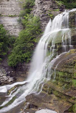 enfield: Lucifero in Enfield Glen Falls, che � in Robert Treman State Park, New York. Verde muschio, licheni e felci lungo la gola pareti aggiungere alla bellezza della scena.