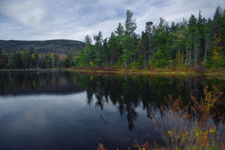 reflecting: Beautiful fall colors reflecting onto Lilly Pond New Hampshire.