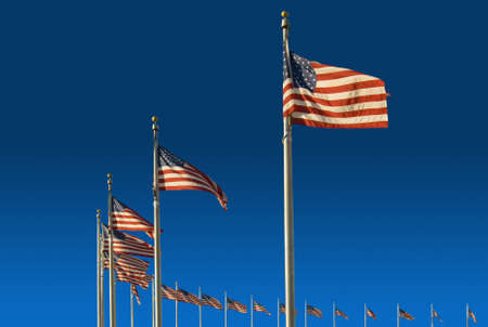 The American flags surrounding the Washington Monument.  Located in Washington DC.