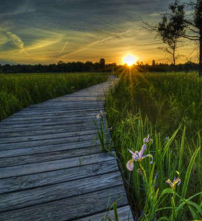 boardwalk trail: Sunset over the Irwin Prairie in Toledo Ohio.