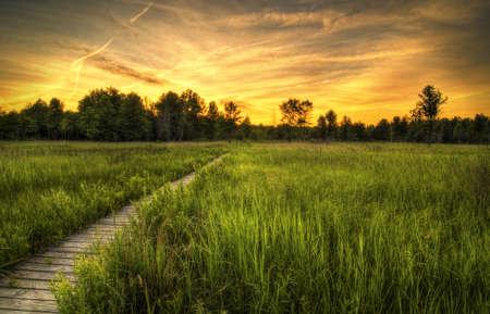 Sunset over the Irwin Prairie in Toledo Ohio.  photo