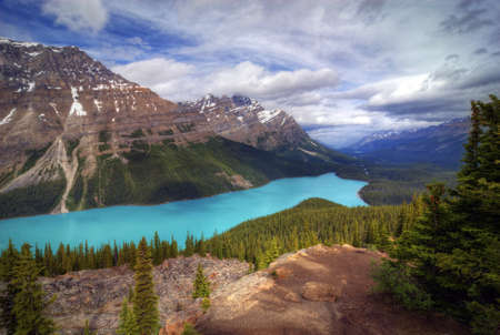 The incredible turquoise  blue water of Peyto  Lake  in Banff National Park in Alberta Canada. The amazing color is natural and is caused by light reflecting on the rock flower which is suspended in the water. The glaciers grind up the rock as they move photo