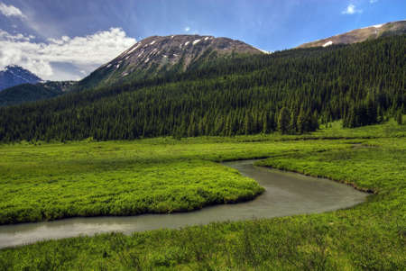 canmore: A winding stream through a meadow in the Canadian Rockies near Canmore.  Stock Photo