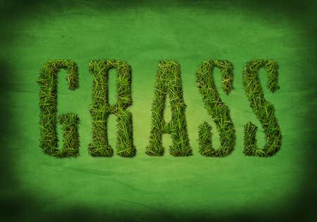 Het woord GRAS gemaakt van een foto van echt gras