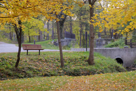 Beautiful  yellows colors of autumn at Sidecut Metropark in Toledo Ohio  The park features remnants of the old Erie Canal