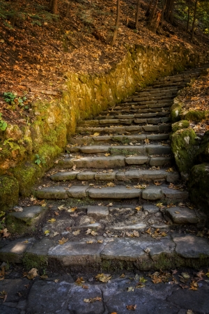 The stairs at the start of the gorge trail to Filmore Glen state park in New York's Finger Lakes region near Morovia. They climb 150 feet to the top of the 1 mile long trail. 免版税图像