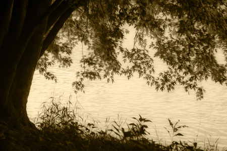 An old tree on the river bank. Photo has been turned into a sepia tone wwith an oil paint filter applied for effect.