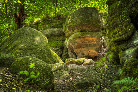 boulder: Huge moss and lichen covered boulders at Nelson Ledges State Park Ohio