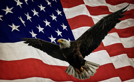 Composite photo of a flying Bald Eagle with a United States of America flag  in the background. Given a subtle grunge overlay for a nice textured effect.  Nice patriotic image for Independence Day, Memorial Day, Veterans Day and Presidents Day. Stock Photo - 33421726