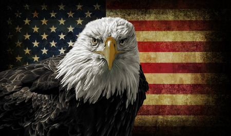 Oil painting of a majestic Bald Eagle against a photo of a battle distressed American Flag. Zdjęcie Seryjne - 35222407