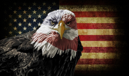 Oil painting of a majestic Bald Eagle with the USA flag across it\'s face against a photo of a battle distressed American Flag.