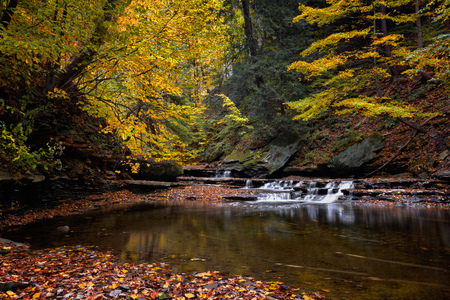 A small waterfall on Brandywine Creek in Cuyahoga Valley National Park Ohio.  Seen here in autumn with colorful fallen leaves. Archivio Fotografico