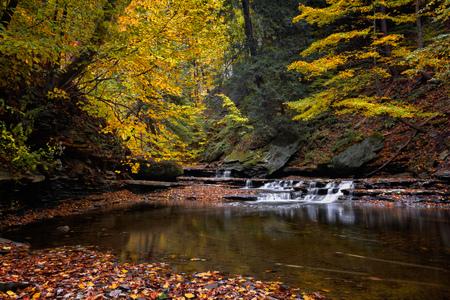Une petite chute d'eau sur Brandywine Creek à Cuyahoga Valley Parc national de l'Ohio. Vu ici à l'automne avec des feuilles colorées tombées. Banque d'images - 47701503