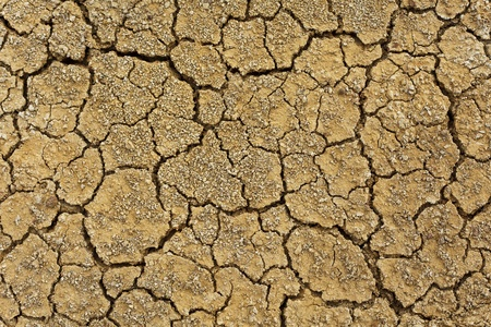 cracked earth: Dry soil in arid areas