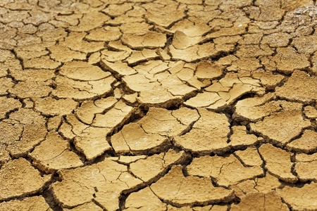 sequias: Suelo seco en las zonas áridas