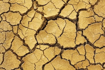 Dry soil in arid areas photo