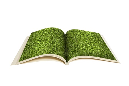turned out: The book turned out to grass Stock Photo