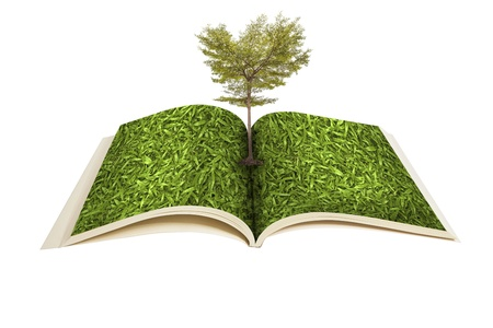 knowledge tree: Magic book with Tree growing on white background