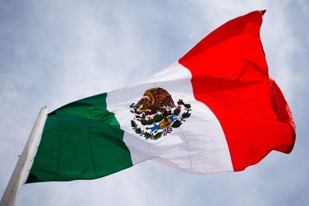 Mexiko Flagge Standard-Bild - 2296847