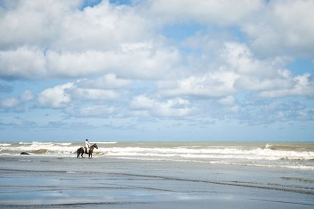 Horse riders Taking a nice stroll down the beach
