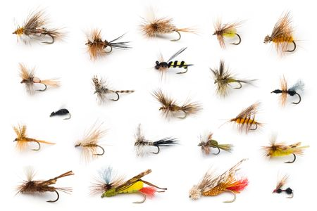 A collection of all different types of fly fishing dry flies.
