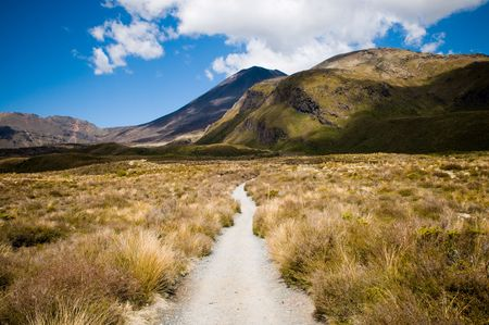A dirt path leading into the mountains photo